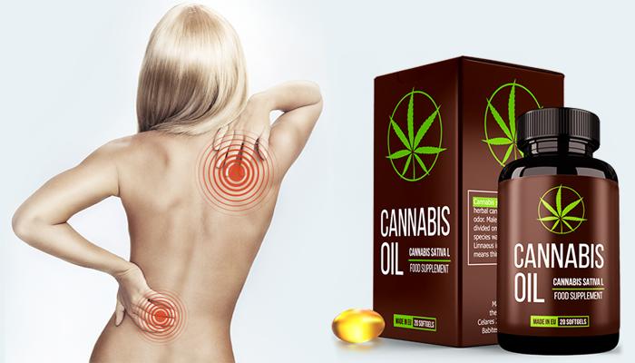 Cannabis Oil: възстановява хрущялната тъкан и ставите